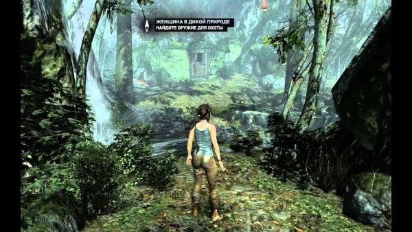 tomb raider survival edition pc download